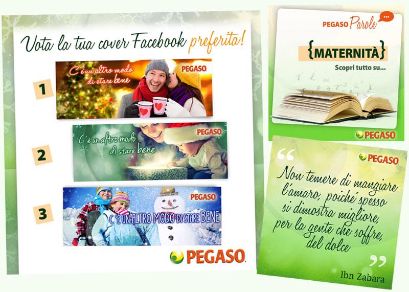 pegaso-fb2